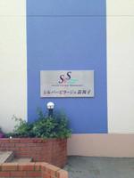 2013_svs5_2